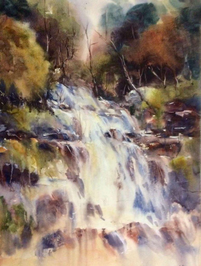 'Rainforest Cascade - Liffey Falls' - SOLD