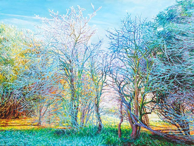 'Hawthorn frost, sun in the morning' - SOLD